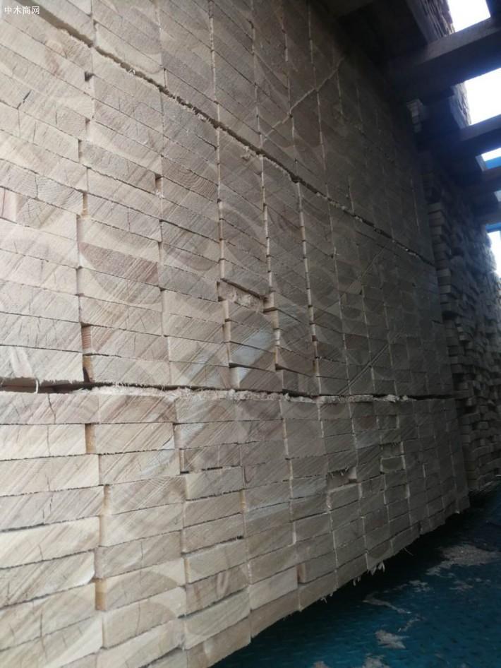 俄罗斯落叶松板材定尺板高清图片