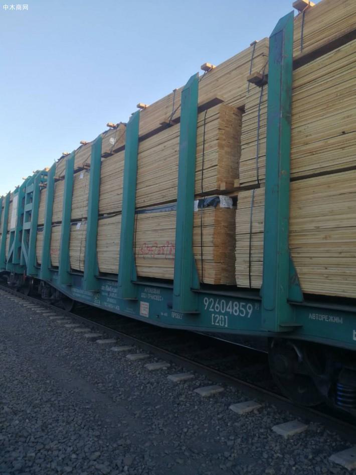 俄罗斯落叶松板材定尺板高清图片厂家