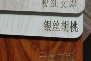 样品板材激光打标_板材激光打标