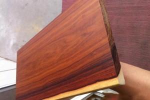 酷似红酸枝木,墨西哥阔变豆是一种什么样的木材?