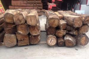 非洲亚花梨原木厂家批发价格