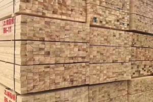 建筑工程木方厂家批发价格
