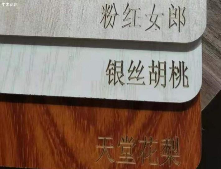 临沂生态板样品展示板册板切割厂家品牌