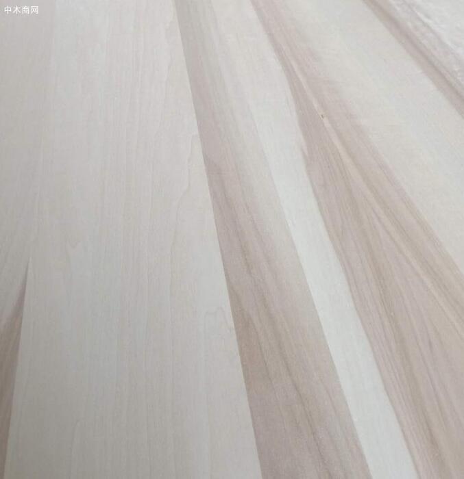 菏泽白杨木直拼板厂家高清在线视频图片