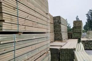 樟子松板材好不好?樟子松板材的优缺点有哪些?