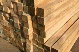中国林产品公司加大澳洲材,南美材,北美木材的采购力度