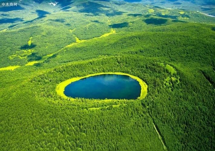 国家林业和草原局2020年安全生产工作要点