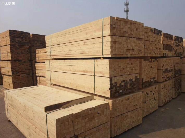 聊城菜屯镇木材加工合作社正式启动运营