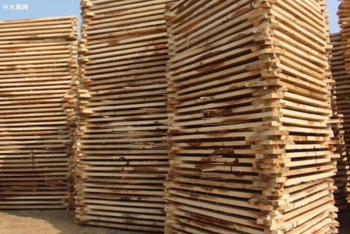 博达杨木板价格多少钱一方博达杨木板材现货实物高清图片