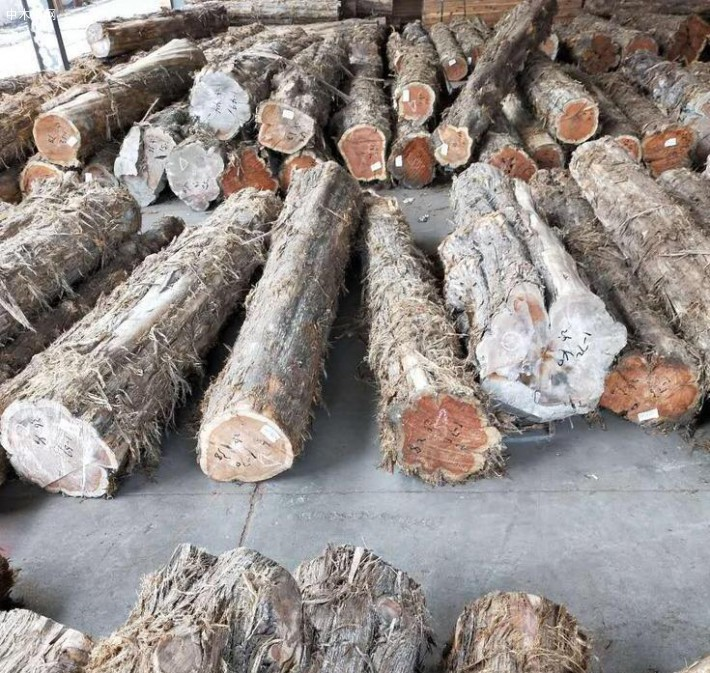 求购:美国红心柏木原木