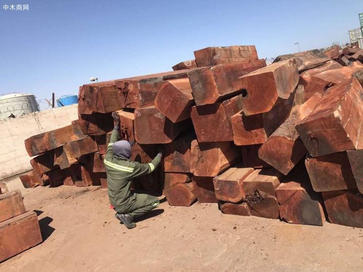 非洲白酸枝虎斑檀原木大方原产地直销价格