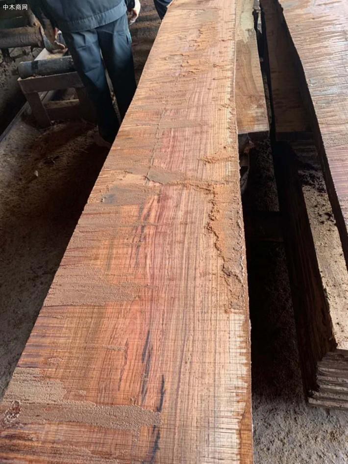 非洲白酸枝虎斑檀原木大方原产地直销价格厂家