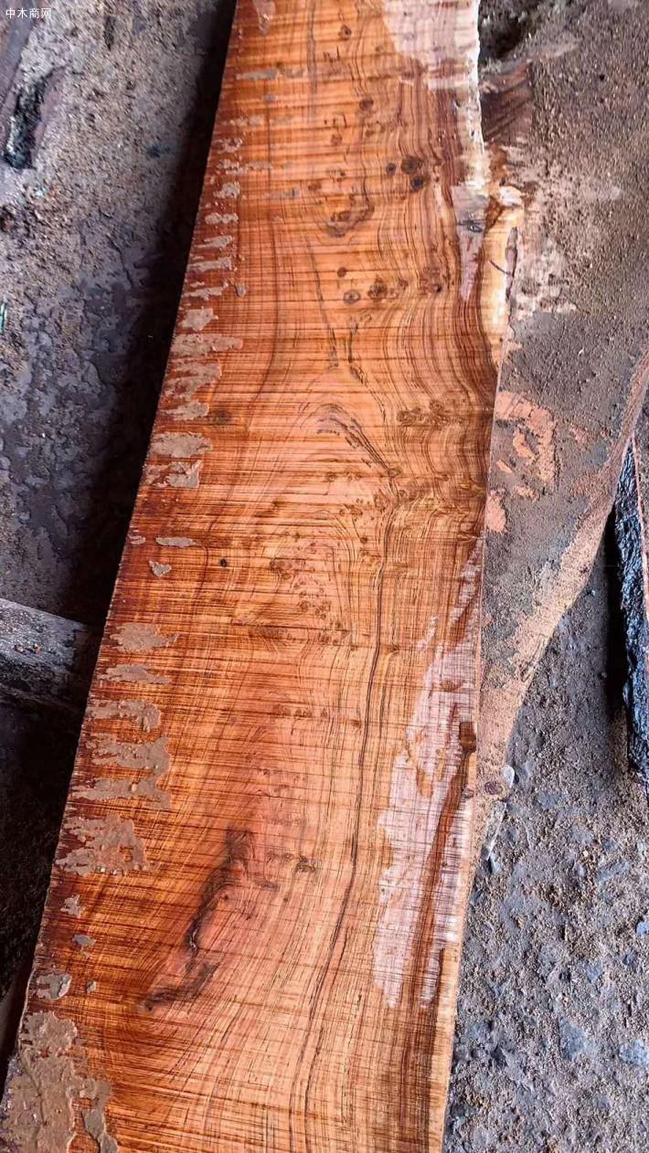 非洲白酸枝虎斑檀原木大方原产地直销价格图片