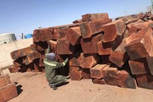 非洲白酸枝虎斑檀原木大方价格多少钱一吨