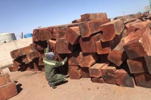 非洲白酸枝虎斑檀原木大方实物高清视频
