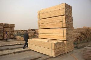 辐射松建筑方木供应商