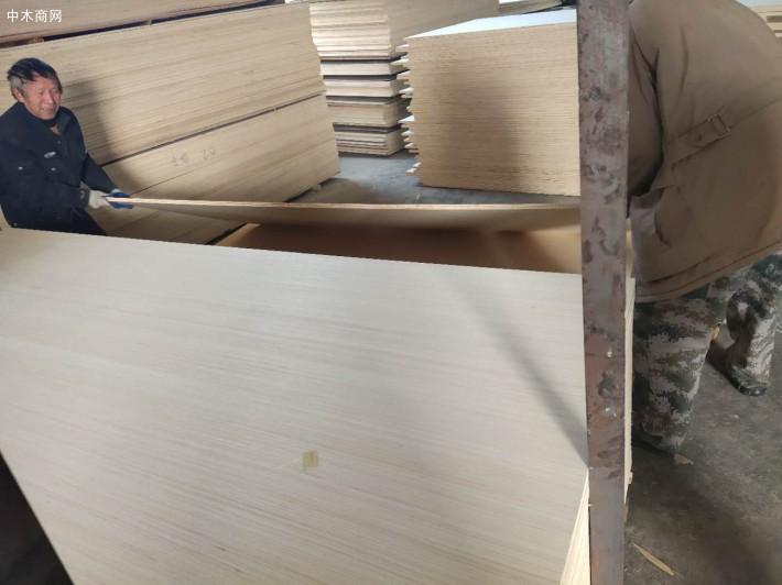 杨桉双科家具板厂家生产细节视频图片