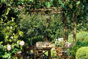有一个庭院藤架,喝茶乘凉好地方!