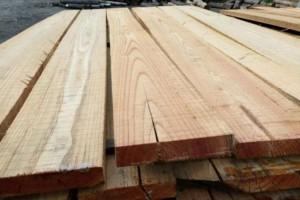 厂家直销白椿木板材各种规格家具烘干板材长期批发