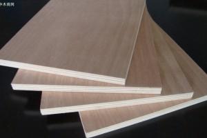 《丰县木业科技产业园总体规划及核心区控制性详细规划》通过专家评审
