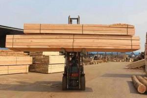 甘肃甘州龙渠乡开展木材加工厂家综合大检查