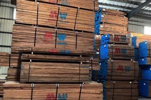 疫情过后从暴涨到暴跌,山东木材经历了什么?