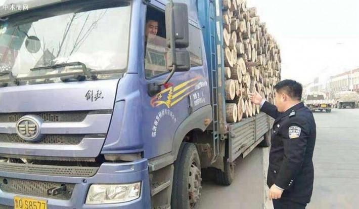云南墨江连续查获两起无木材运输证运输木材案件