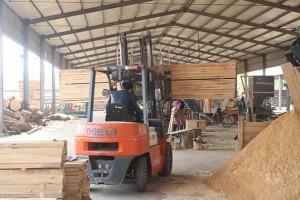 沭阳县掀起新一轮木材加工企业安全隐患排查整治高潮