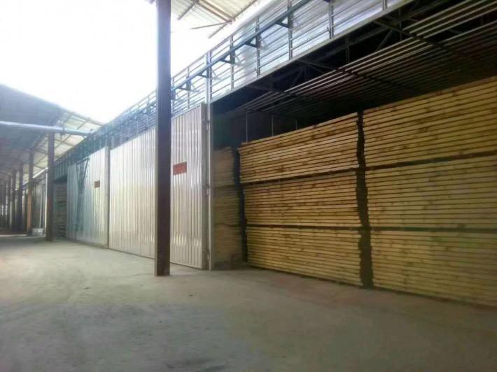 新春木材干燥设备木材烘干房高清图片厂家