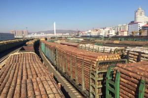 绥芬河自贸片区:绥芬河木业产业基金促全产业链发展