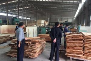 生态环境部调研组来兰山区木业加工企业调研