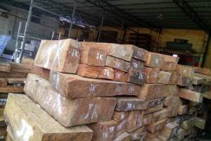 花梨木大果紫檀原木价格多少钱一吨_2020年5月27日
