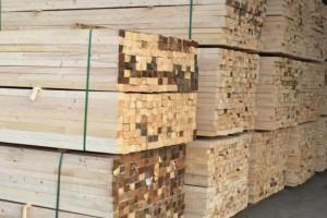 目前英国木材行业市场整体仍然处于较低的运转状态