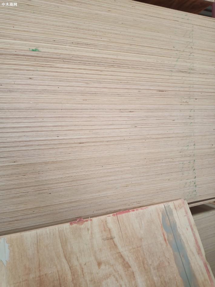 橡胶木免漆板,生态板厂家直销图片