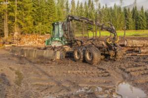今年俄罗斯新西伯利亚州木材采伐量已经超过15万立方米!
