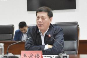 王安德:推动临沂木业发展再创新辉煌