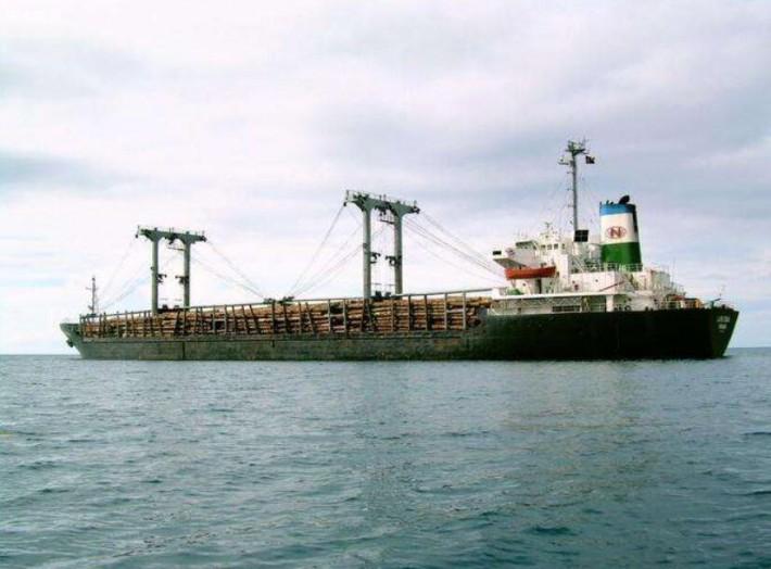 福建湄洲湾港疫情后首迎两艘原木船同靠作业