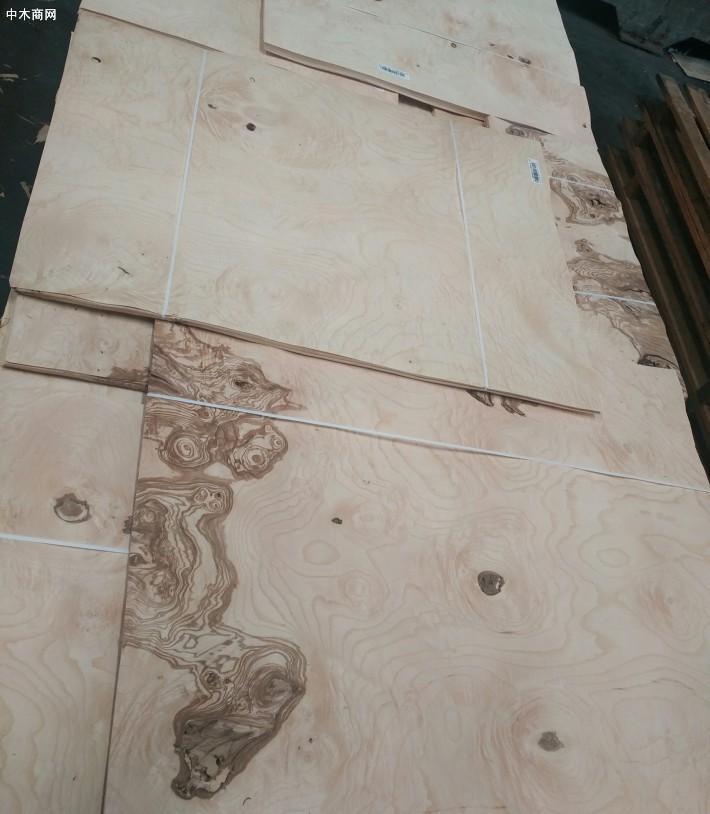 白栓树瘤木皮,白栓树瘤天然木皮,白栓树瘤染色木皮,染色木皮图片