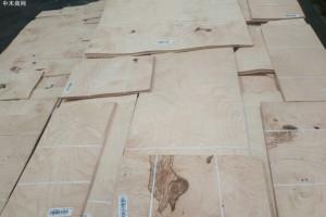 白栓树瘤木皮,白栓树瘤天然木皮,白栓树瘤染色木皮,染色木皮