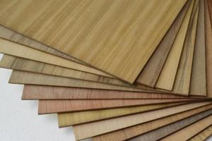 加蓬约有40%的中国贴面板厂已经停产