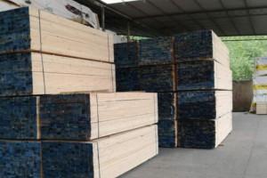 广西省助推木材加工企业绿色发展