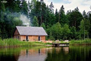 2020年拉脱维亚木材和木材产品占林产品出口大幅下滑