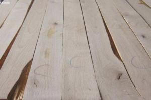 什么是美国赤桦木及美国赤桦木优缺点?