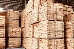 橡胶木板材批发价格