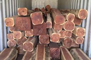 南美红檀香木材价格行情_2020年7月8日
