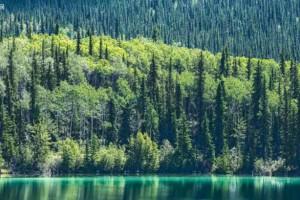 湖南省南山国家公园大力推动生态保护