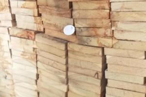 满洲里,二连浩特,绥芬河口岸木材销售亏损成常态