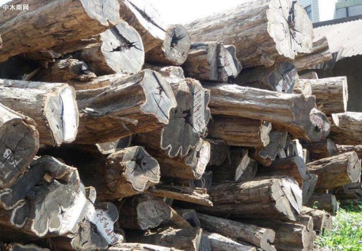 东非黑黄檀原木价格多少钱一吨_2020年7月28日