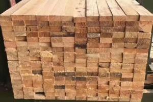 建筑支模用方木用途及价格是多少?