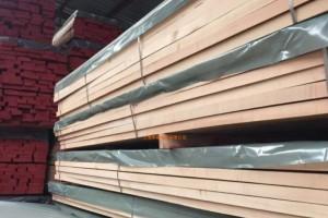 广东榉木板材价格行情_2020年7月31日